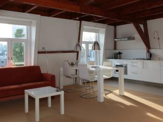 Top floor loft, L'Aia