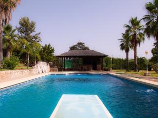 Magnifica private Villa with pool and sport court, Guaro