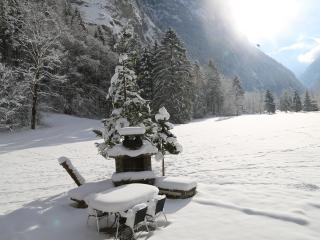 Private Chalet by Trummelbach Falls