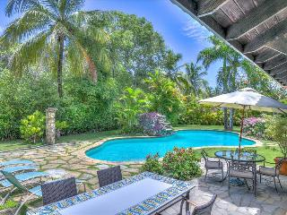 Villa Las Palmas - quintessential vacation home