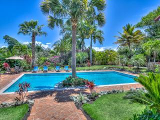Villa Jardin Paraiso - Caribbean vacation