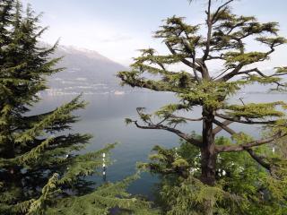 Bellano Attic Lake View