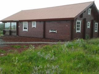 Cozy Cottage near Geysir