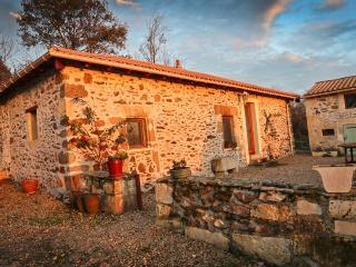 Gite châtaigne with pool.Dordogne Perigord ., Nontron