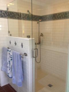 Master Bedroom Shower with body sprays