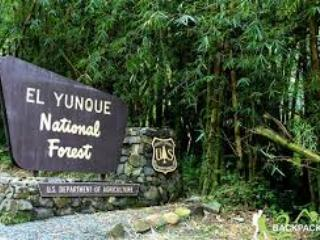 El Yunque National Rain Forest is less than 10 minutes driving distance from the condo.