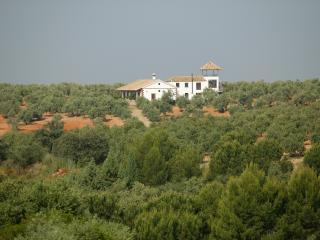 Molino de Don Federico - Casa rural sin igual!, Montoro