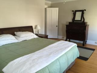 Master Bedroom with king size bed and walk in closet