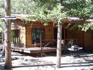 Canyon Cabin - Nathrop, near Buena Vista & Salida