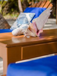 Relax on the new beach chairs and watch the kids play - your private chef is preparing lunch for you
