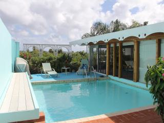 St Thomas - Villa with private pool-no car needed, East End
