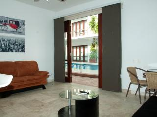 Stunning 1 Bedroom in the Old City