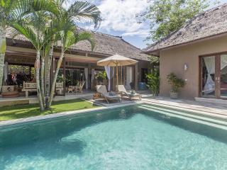 OPENING SPECIAL Teman Desa Villa Dua: Luxury 3 Brm
