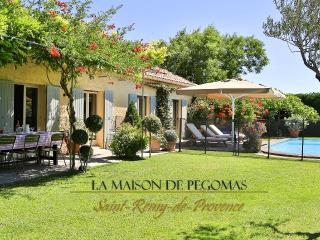 La Maison du Gecko - Provence, Saint-Remy-de-Provence