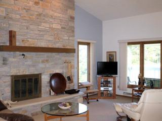 Great room with vaulted ceiling & wood fireplace