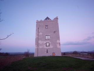 Killahara Castle, Thurles