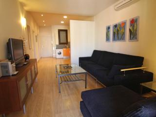 Miro D apartment, Barcelona