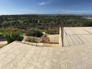 La terrazza sugli ulivi - monolocale La moresca