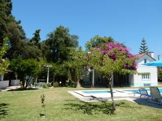 Great family holiday home, with guesthouse, Azeitão