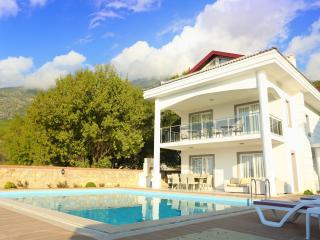 Modern 5 bedroom villa with private pool, garden and mountain view.