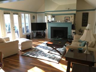 Sunny living room. Sparkling wood floors -- brand new this month!