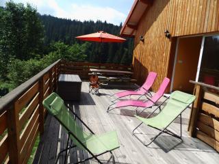 Gîte de 93m², à 820m d'altitude, en pleine nature, Ban-sur-Meurthe-Clefcy