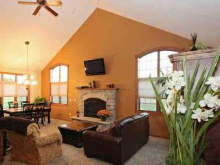 Gorgeous 3Bd (Sleeping Loft) /3BaTownhouse ~ Sleeps 10 with futon & air mattress, Wisconsin Dells
