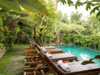 Villa Ibu, Rice Fields, Wifi, Pool, Walk to Yoga