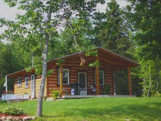 Modern Log Cabin (25 min drive from Baddeck)