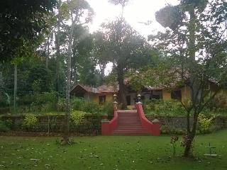 RARE EARTH ESTATE HOMESTAY, Madikeri