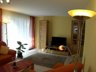 LLAG Luxury Vacation Apartment in Baden Baden - 700 sqft, allergy-friendly, Baden-Baden