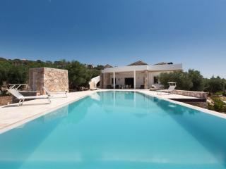 625 Villa con Ampia Piscina