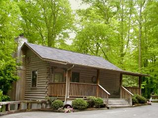 Eagle's Nest  Privacy Mtn View Hot Tub Deck King Bed WiFi  Free Nights, Gatlinburg