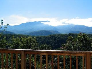LeConte Landing  Gaming Near Ober Ski Resort Mtn View Pets Free Nights, Gatlinburg