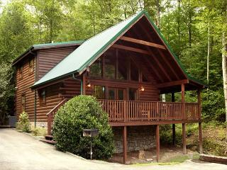 On Smoky's Pond   Pool Access Hot Tub FireplaceViews WiFi  Free Nights, Gatlinburg