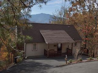 On Eagle's Wings  Views Hot Tub Theater WiFi Pool Access   Free Nights, Gatlinburg