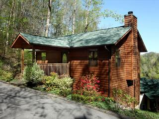 Easy Livin  Near Downtown  Wood Fireplace  Hot Tub  Pool Table  Free Nights, Gatlinburg