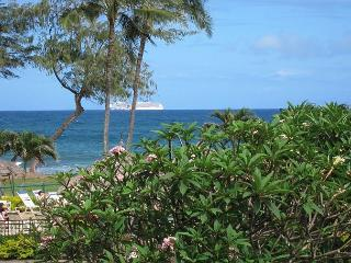 Islander on the Beach #201, Ocean View Studio, Beachfront, Air Conditioned!, Kapaa