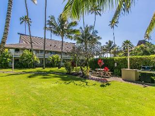 Plantation Hale Suites D2, Walk to Town, AC in Unit, $99/Night Special, Kapaa