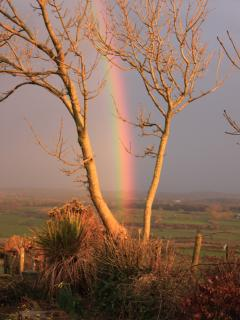 Spectacular rainbows over the front garden