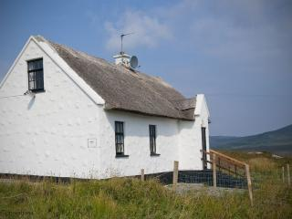 Cottage 136 - Oughterard - Thatched Holiday Cottage in Oughterard