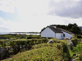 Cottage 176 - Roundstone - Inishnee Island Roundstone