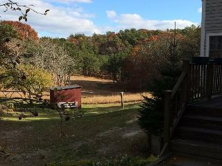 Charming Meadowside Home in Truro Close To Cape Cod Beaches - Sleeps 10