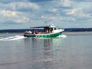 Many deep sea excursions available including Tuna Fishing or mackerel & cod