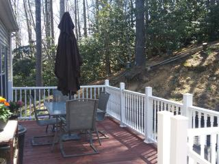 3 bedroom ~ Located in Valle Crucis~Air Conditioning~ Fire pit ~ Pool table ~