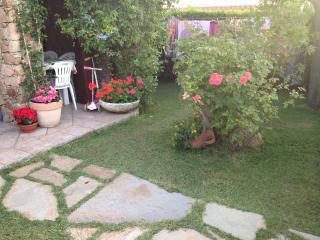 Casa centralissima con giardino e doccia esterna, San Teodoro