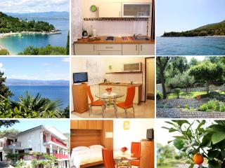 Lovely Studio Apartment, Medveja