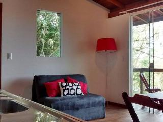 Cozy and Stylish With View of Lagoa, Lagoa da Conceicao
