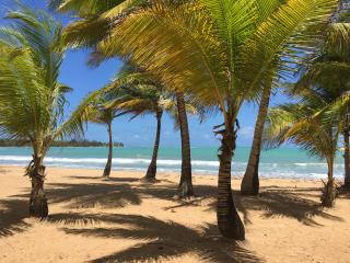 Beach Front !! 10 min to National Rain Forest, Luquillo
