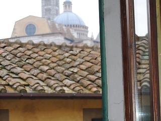 Contrada dell'Oca, Siena